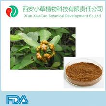 Morinda citrifolia extract /morinda officinalis extract supply by factory