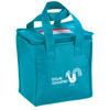 ice bag / promotional cooler bag / vibrant lunch cooler
