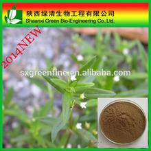 Natural epimedium extract icariin 98%, CAS No:489-32-7
