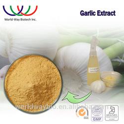 Natural China garlic extract bulk wholesale allicin extract garlic product