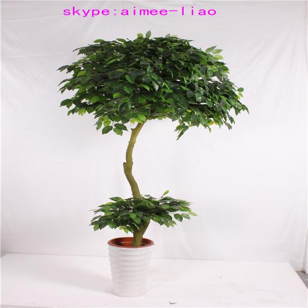 Q082922 diff rents types de plantes et arbres artificielle ficus bonsa faux - Different type de gazon ...