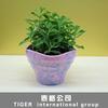 customized decoration sun UV resistant plastic flower pot