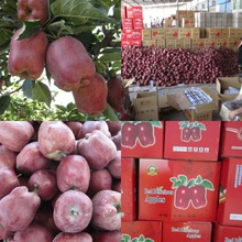 2014huaniu fresh apple for sale