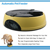 Pet Safe Material LCD Display Feeder Digital Timer Record Automatic Pet Feeder For Cat&Dog