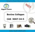 Cas hp90518 9007-34-5 de colágeno bovino