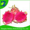 Tropical hybrid dragon fruits seeds for sale