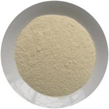 Dehydrated Spicy Powder (Onion Powder)