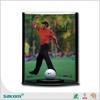 hot saleacrylic golf ball display