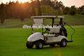 Curtis marca controlador de 48 V de un solo asiento de mini eléctrico del carro de golf con segura mano