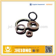 Hydraulic Cylinder Oil Seal