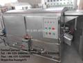 Torrefação de plantas para a castanha de caju/amendoim/amêndoa ce/iso9001approved