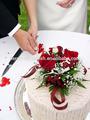 de recursos humanos de color alambre de floristería para corona de flores