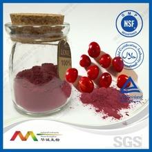 Cranberry Extract,American Imported Fruit,Vaccinium Macrocarpon Origin