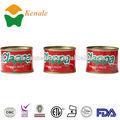 conservas de tomate 70gx50tins marcas