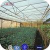 ANLI PLASTIC crystal polycarbonate solar panel greenhouse