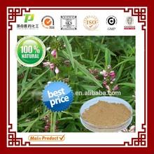 100% Natural Factory supply Leonurus cardiaca extract Motherwort Herbal Extract
