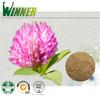 Trifolium pratense L extract / Red Clover Extract /Trifolium Extract/8%~40%Isoflavones