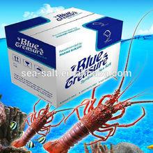 Wholesale sea salt fish tanks live lobster price
