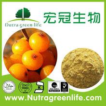 Natural sea buckthorn powder/sea buckthorn fruit /dried sea buckthorn powder