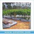 Agricole et horticoles planteurs de paillage papier