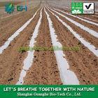 High quality agricultural film/Compostable transparent plastic film