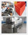 Automática de la bandeja de plástico cesta de lavado de la máquina//0086-13673629307