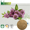 Trifolium pratense L extract / Red Clover Extract /Trifolium Extract