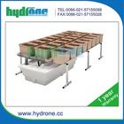 Aeroponic hydroponic lettuce dutch grow pots bucket systems