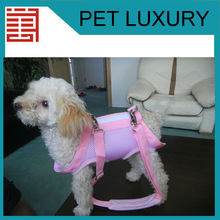 delicate Dog Bag Carrier