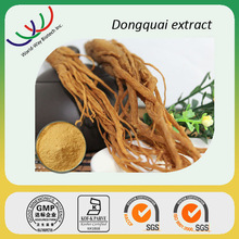Dong quai root extract powder 2014 China supplier bulk wholesale dong quai extract 1% ligustilide