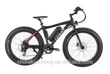 mountain electronic bike 36v giant