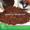 natural de ganoderma lúcido extracto en polvo