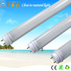Factory price. high quality price led tube lamp t5 best price fluorescent tube sizes