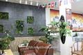 2014 vente chaude prix usine artificielle herbe mur pour décoratif