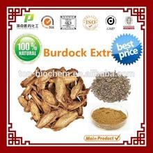 Great Burdock Fruit Extract 100% Natural burdock root extract