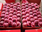 2014 huaniu appe/ red delicious apple 100-113-125-138-150