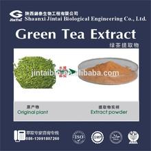 98% polyphenol powder organic bio green tea extract