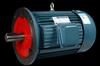 Y2 (IE2) series three phase electric motor (aluminum motor)(11kw-4)