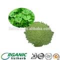 La venta de polvo de alfalfa/ harija de alfalfa/ alfalfa deshidratada