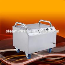 CE No boiler design risk free Multifunctional steam portable car wash machine / home appliance steam jet