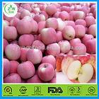 fresh Fuji red apple wholesale