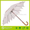 Paraguas de forma especial, paraguas de la lluvia de la cubierta de plástico para la venta