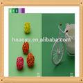 اللون الأخضر الخلفيات استوديو الصور الفريدة ورقة للبيع