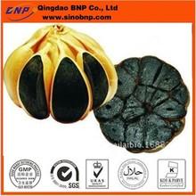 GMP&Kosher BNP Supply Natural Black Garlic