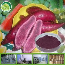 purple sweet potato p.e.