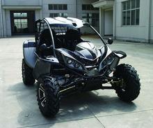 Go Kart Beach Sports Buggy 800cc