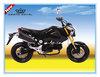 fashion motorbike 125CC new style (MSX 125CC)