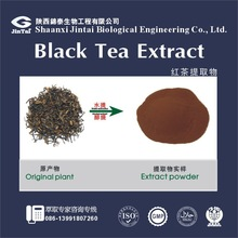 Natural high quality theaflavin Black Tea Extract