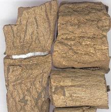 Eucommia Ulmoides Extract Gutta-Percha