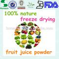 100% orgânico liofilizado frutas pó( iso, haccp, kosher certificado)